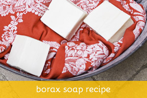 Borax Soap Recipe