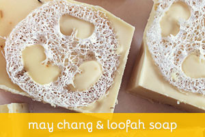 May Chang and Loofah Bar
