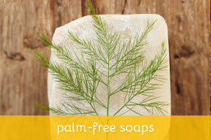 Palm-Free Soap Recipes